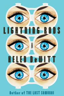 <cite>Lightning Rods</cite> by Helen DeWitt