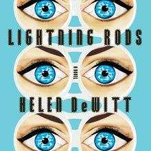 <cite>Lightning Rods</cite> by Helen DeWitt