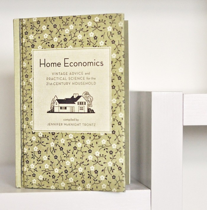 Home Economics by Jennifer McKnight Trontz 4