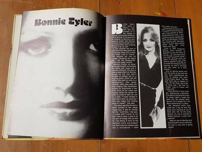 Top Pop Scene annual 1978 4