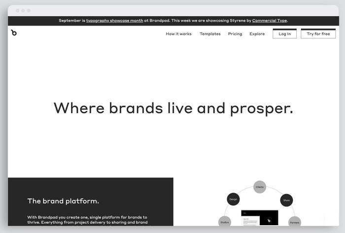 Brandpad's website typeset in Styrene (week two)