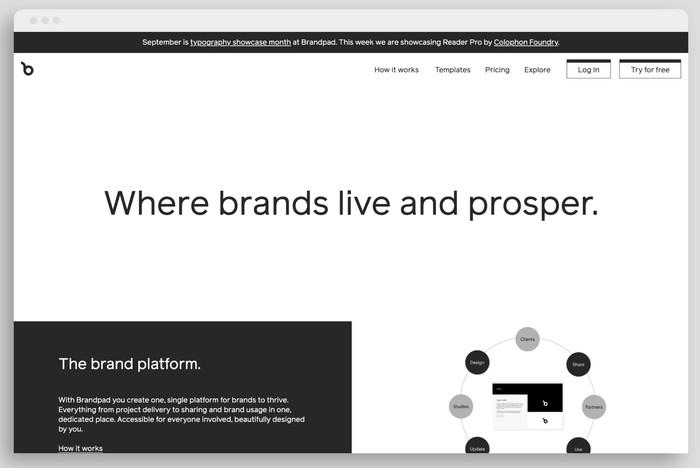 Brandpad's website typeset in Reader (week three)