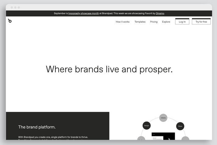 Brandpad's website typeset in Favorit (week four)