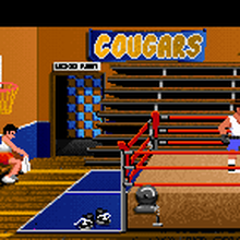 """Cougars"" banner in <cite>Indiana Jones and the Last Crusade: The Graphic Adventure</cite>"