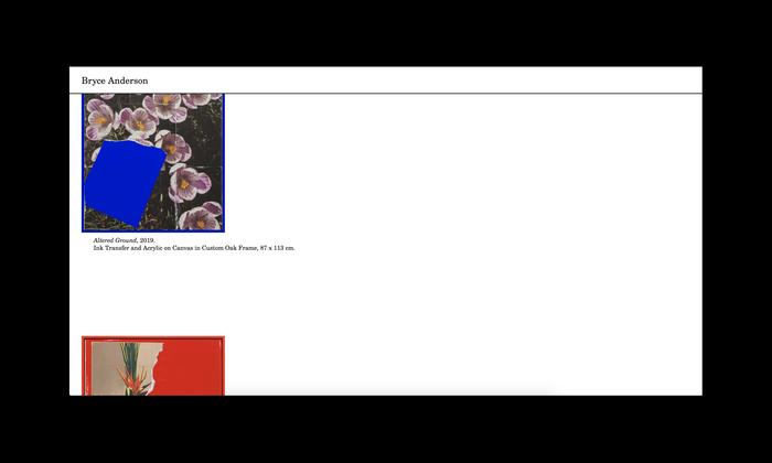 Bryce Anderson website 3