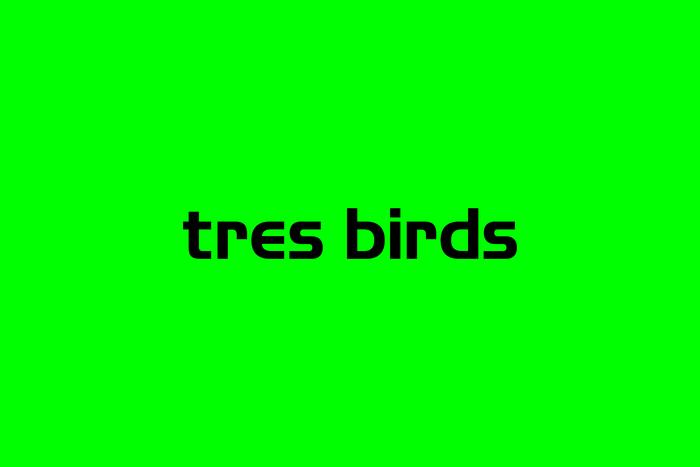 Tres Birds 3