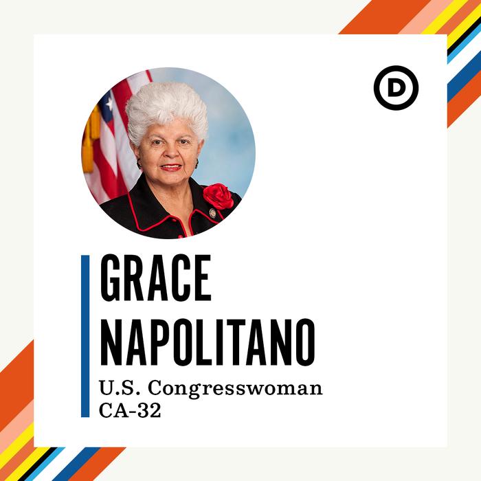 Democratic National Committee website 2