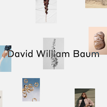 David William Baum