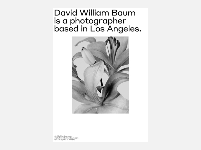 David William Baum 7