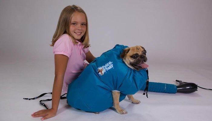 Puff-N-Fluff dog dryer 1