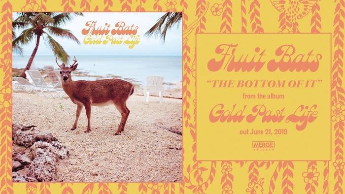 Fruit Bats – Gold Past Life album art 2