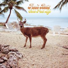 Fruit Bats – <cite>Gold Past Life</cite> album art