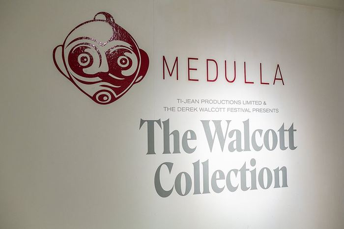 The Walcott Collection at Medulla Art Gallery 6