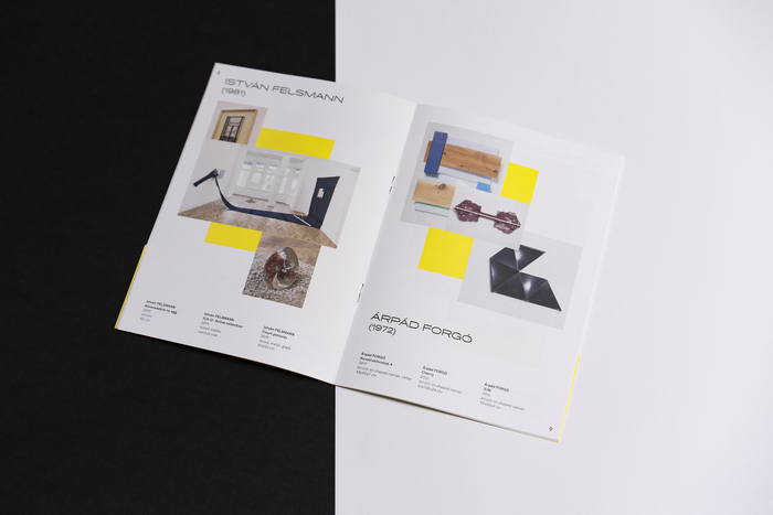 The Viewer. Focus on Hungary exhibition catalog 6