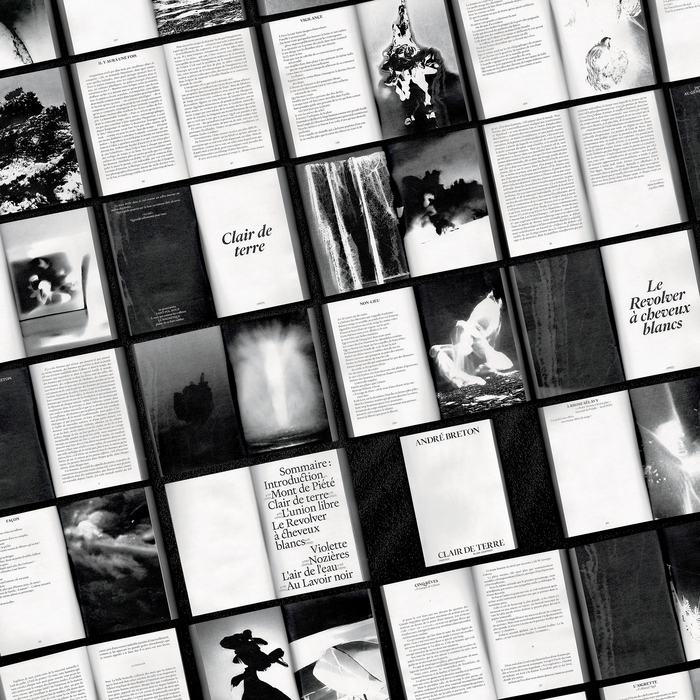 André Breton – Clair de Terre 5