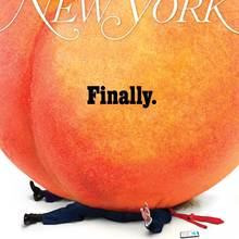 <cite>New York</cite> magazine (2019–)