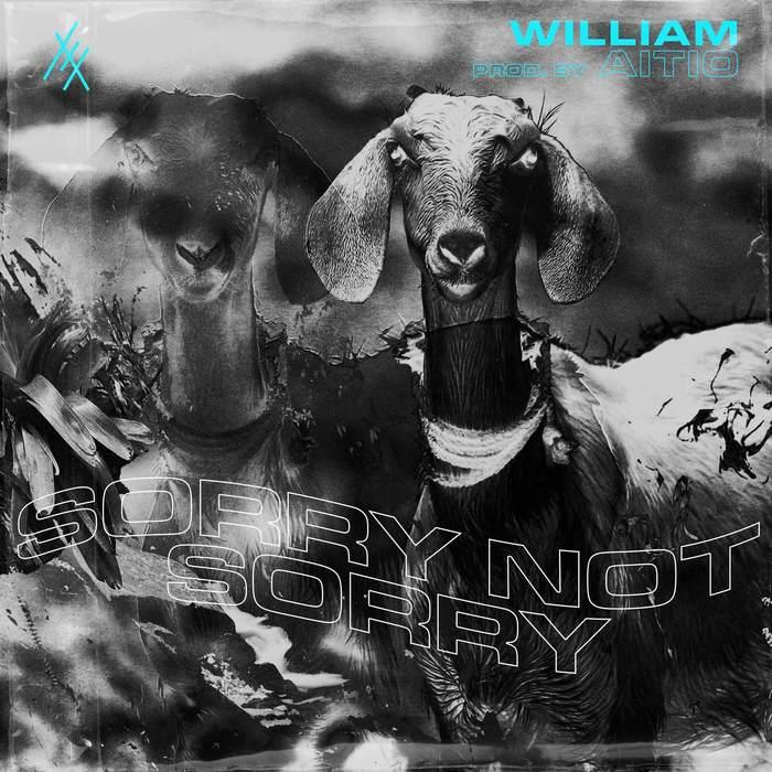 """Raketoin"" single and Sorrynotsorry album – William 4"