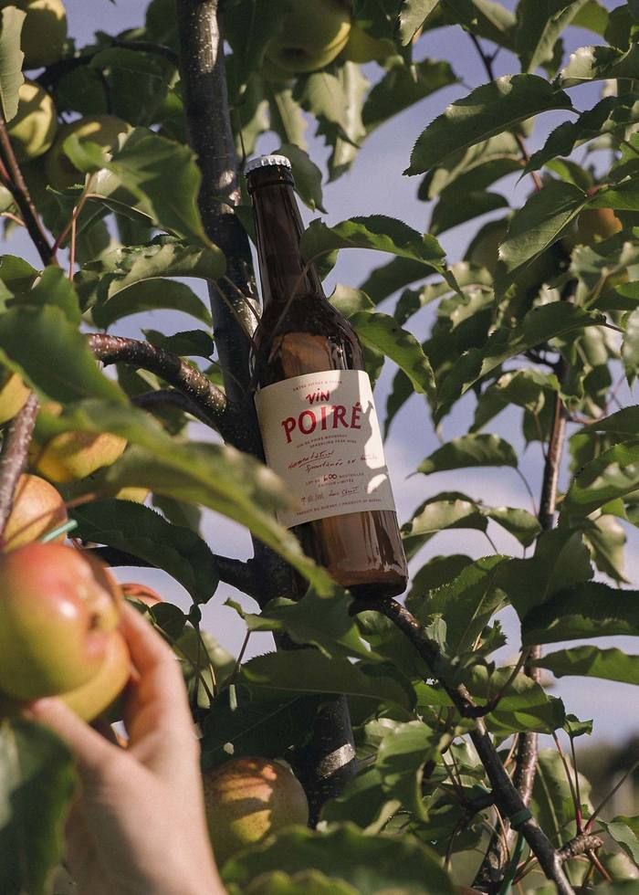 """Entre Pierre & Terre"" orchard ciders 2"