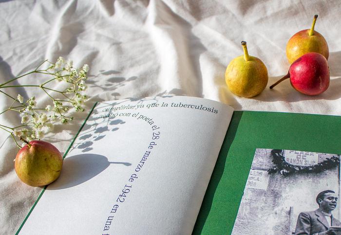 Poemas, Miguel Hernández 2
