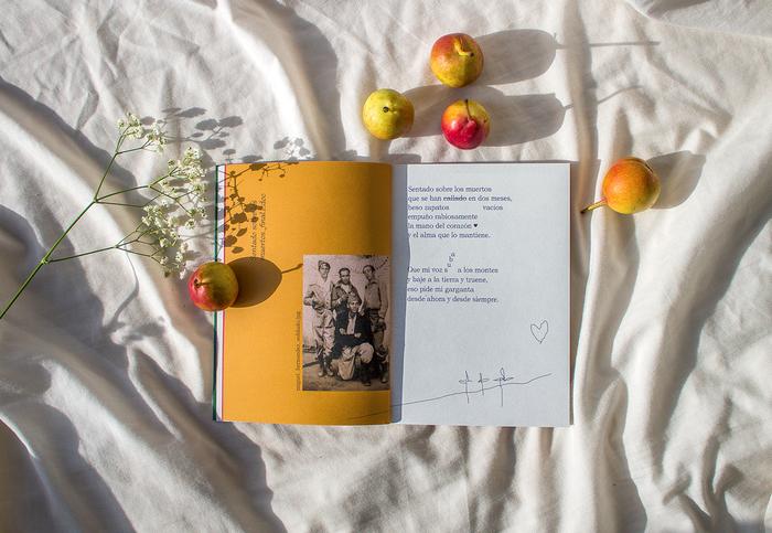 Poemas, Miguel Hernández 4