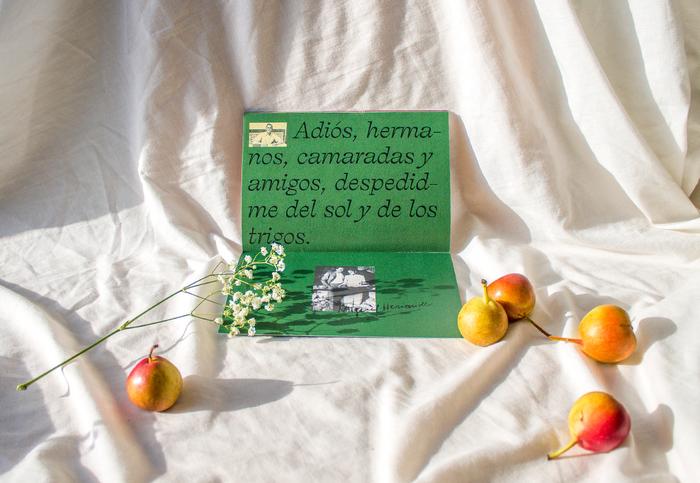 Poemas, Miguel Hernández 7