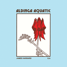 <cite>Aldinga Aquatic</cite> – James Harbard