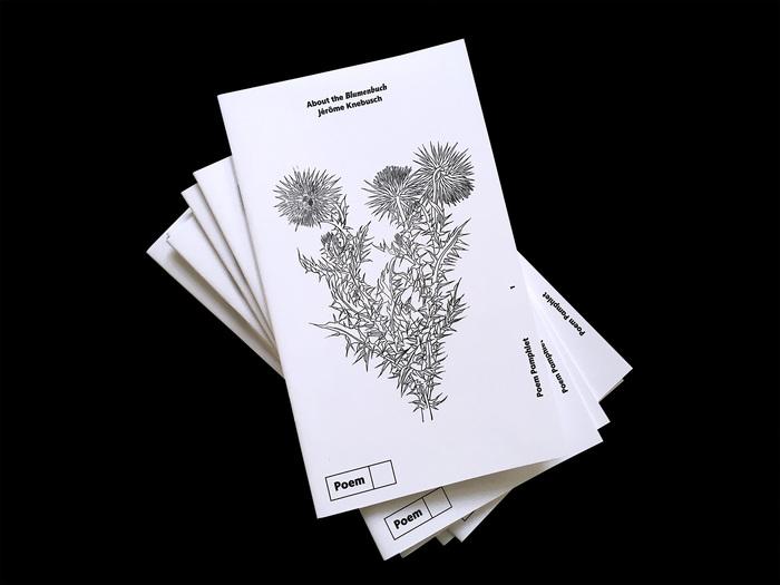 Unpublished flower, Kratzdistel [thistle].