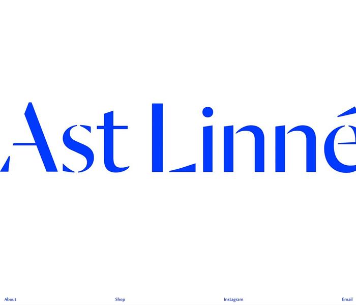 Linnéa And-Ast website 2