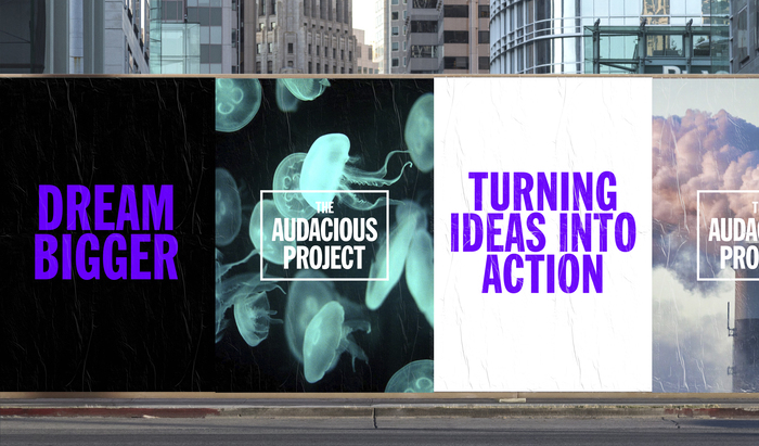 The Audacious Project (TED Conferences) 7