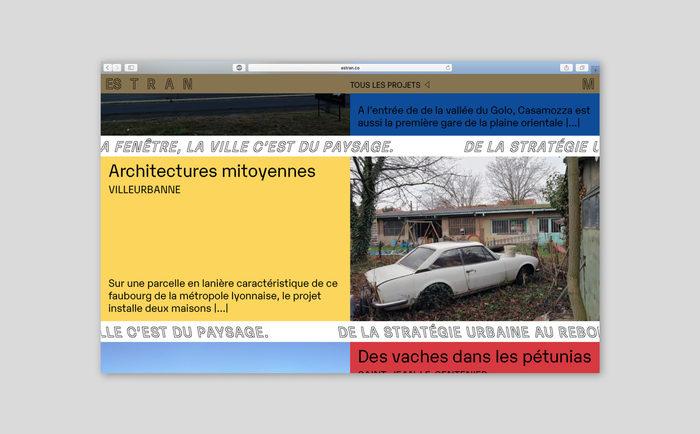 Estran identity and website 7