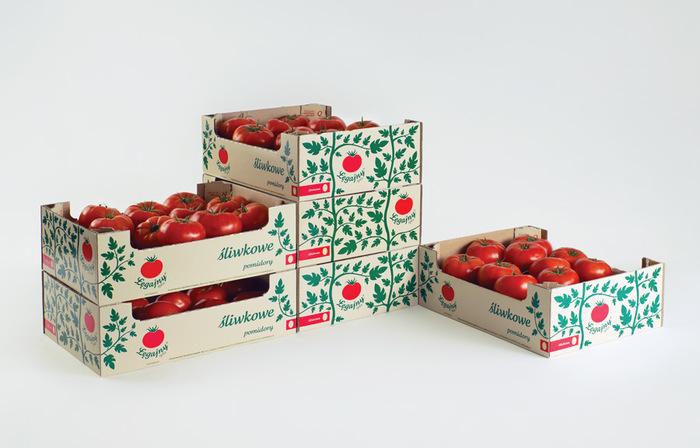 Legajny Tomato Farm 6