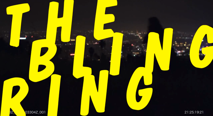 The Bling Ring teaser trailer 6