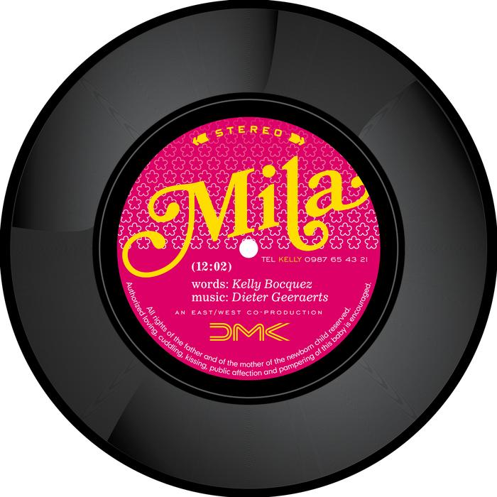 Vinyl Birth Announcement 4