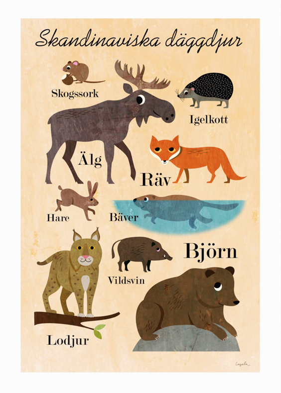 Skandinaviska Däggdjur (Scandinavian Mammals)