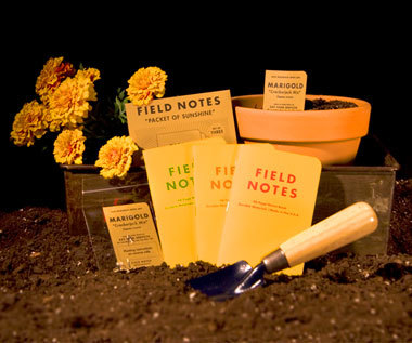 Field Notes 4