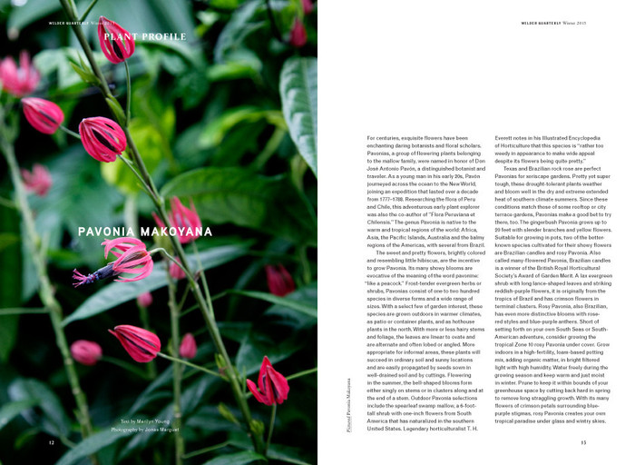 Wilder Quarterly 2011–13 4