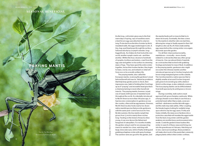 Wilder Quarterly 2011–13 5