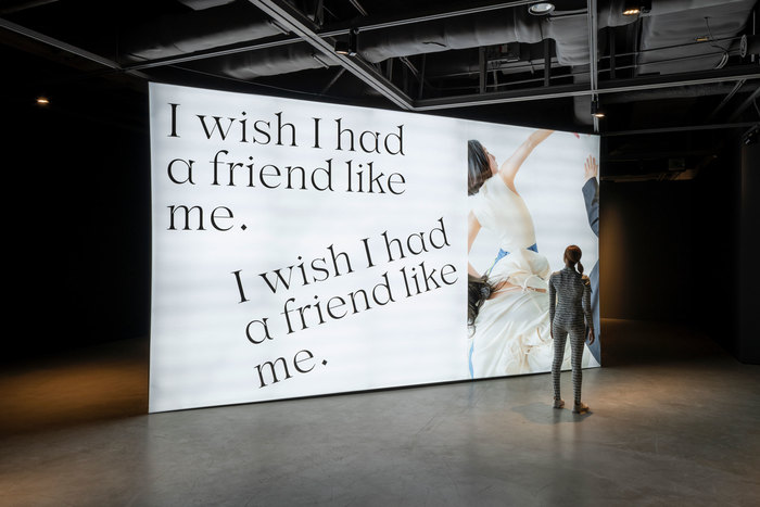 Halominium's I wish I had a friend like me collection 1
