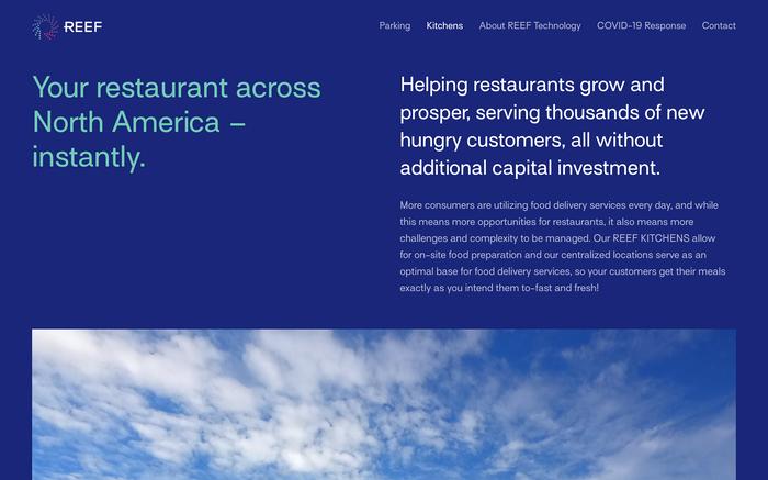 REEF website 3