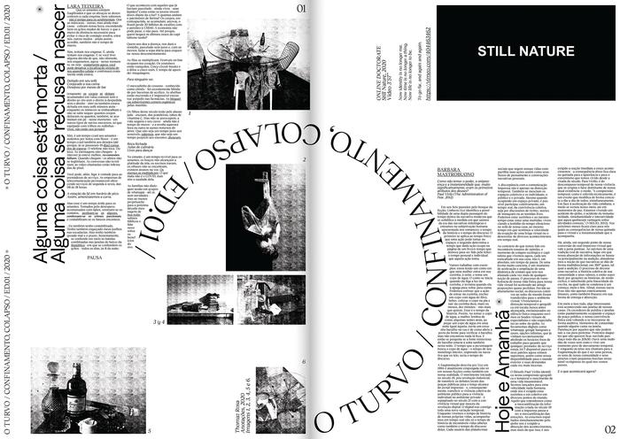 O Turvo, Issue 01 2