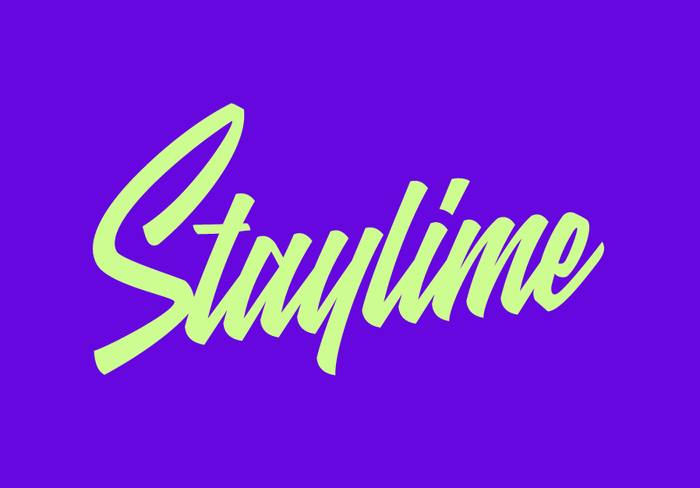 Staylime website and logo 7
