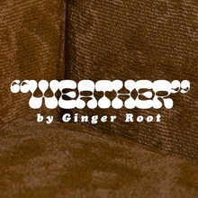 "Ginger Root – ""Weather"" video"