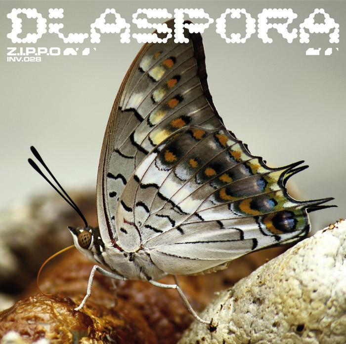 Z.I.P.P.O – Diaspora EP 2