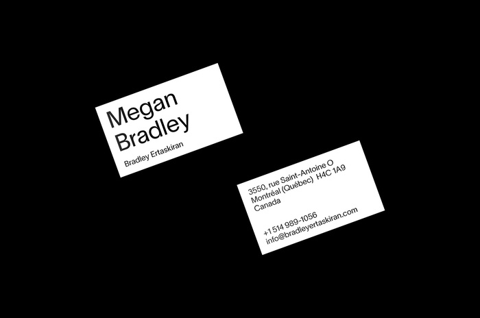 Bradley Ertaskiran art gallery 2