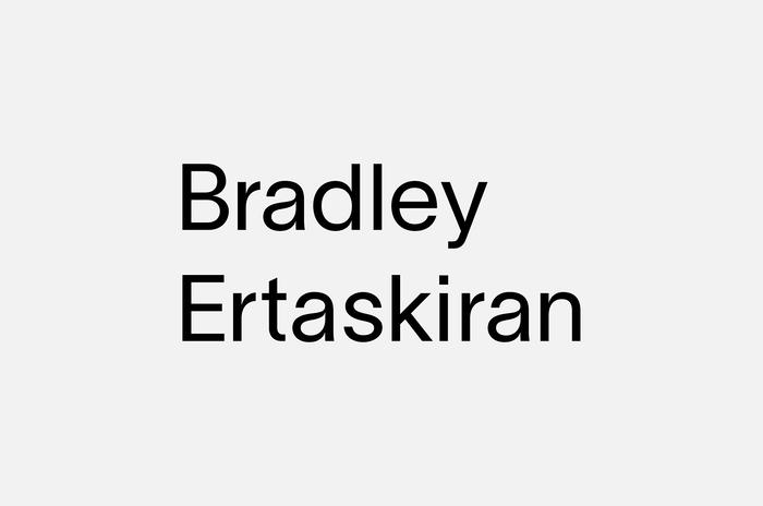 Bradley Ertaskiran art gallery 4