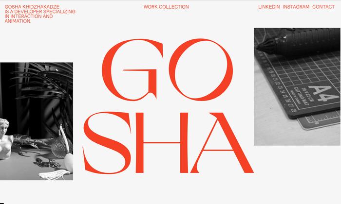Gosha Khidzhakadze personal website 1