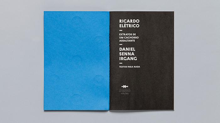 Textos para nada, Ornitorrinco Press 9