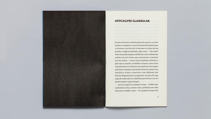 Textos para nada, Ornitorrinco Press 11