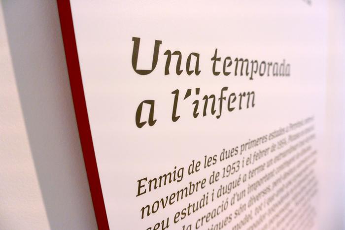 Picasso Perpignan, le cercle de l'intime, 1953–1955 5