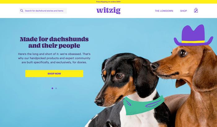 Witzig logo and website 3